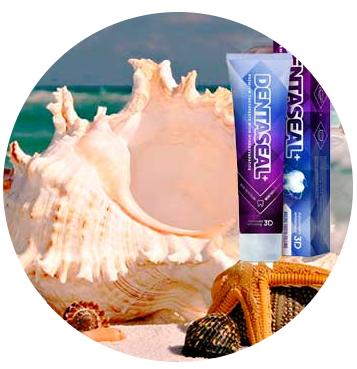 Denta Seal (Дента Сиал) - зубная паста