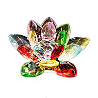 Лотос разноцветный
