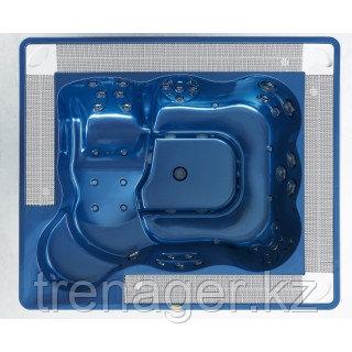 Гидромассажный спа бассейн Jacuzzi Virginia Professional