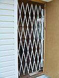 Решетки - ширмы, фото 5