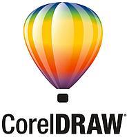 CorelDRAW Graphics Suite 2019 Single User Business License (Windows) Бессрочная лицензия