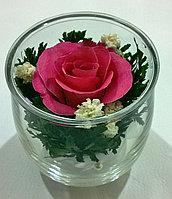 Живые цветы в стекле SSRp