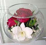 Цветы в стеклянной колбе BSM2, фото 2