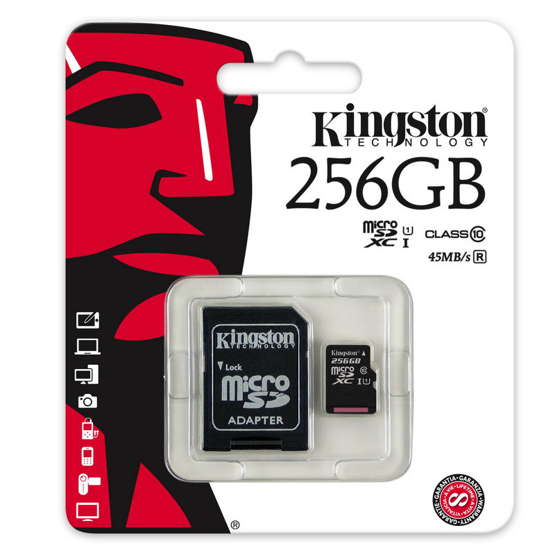 Карта памяти MicroSD 256GB Class 10 U1 Kingston SDC10G2/256GB