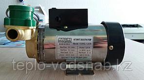 Насос автоматический повысительный для квартир и малых коттеджей 15WG-90A для холодной воды, фото 2