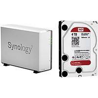 Домашний медиа сервер Synology DiskStation DS115j + 4 Tb жестким диском