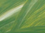 Витражная пленка цвета Willow (Оливковый)