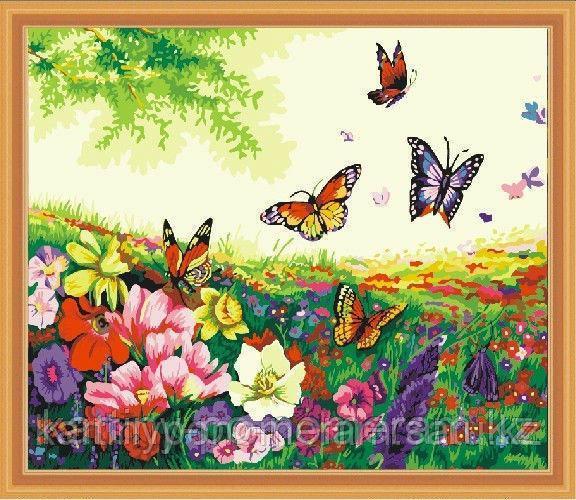 """Картины по номерам  """"Бабочки 30х40"""""""
