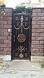 Ворота из иранского материала, фото 3