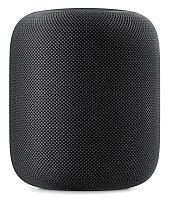 HomePod - Space Gray, фото 1
