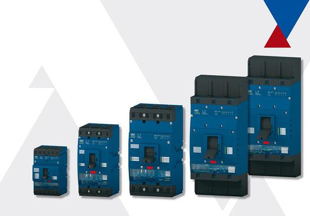 BD250 Компактные автоматические выключатели до 250 A OEZ, фото 2