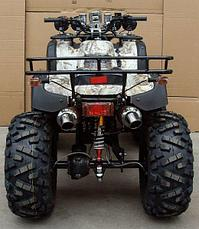 Yamaha Grizzly 250 , фото 3