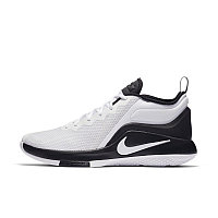 Баскетбольные кроссовки Nike Lebron Air Zoom Witness 2 White/Black