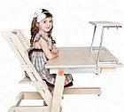 Растущий стул, ортопедический стул, детский стул (береза), фото 5