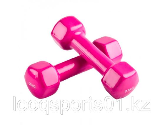 Гантели для фитнеса 1 кг (0.5 кг + 0.5 кг)