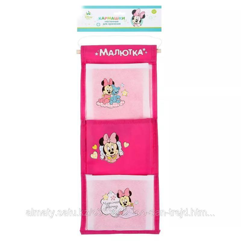 Кармашек в шкафчик для детского садика с рисунком для девочек