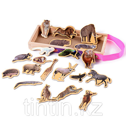Деревянные магнитные животные, 20 штук, фото 2