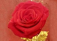 Вечная живая Роза на золотом стебле, фото 3