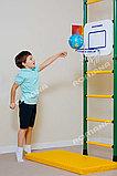 Детское баскетбольное кольцо ДСК-ВО 92.04-02 Романа, фото 2