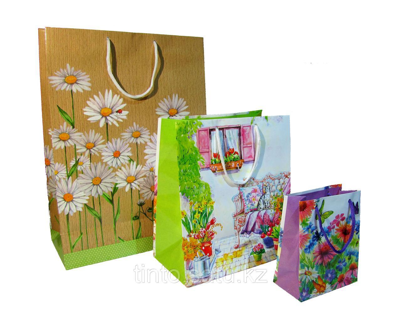 Пакеты подарочные  большие 3в1