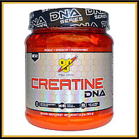 BSN DNA Creatine Unflavored 309 g