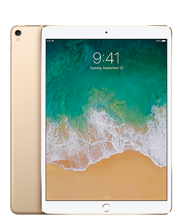IPad Pro 10.5 256Gb  Wi‑Fi + Cellular Gold, фото 2