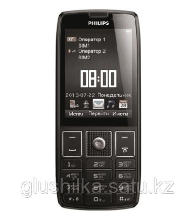 Специальный мобильный телефон Philips Xenium X5500, фото 2