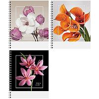 """Тетрадь общая ArtSpace """"Цветы. Стильные букеты"""", А5, 96 листов в клетку, на спирали"""