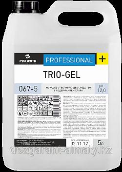 Моющее отбеливающее средство для сантехники с содержанием хлора TRIO-GEL