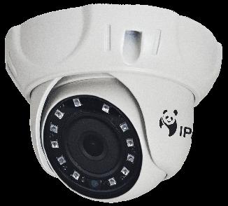 IP Камера StreetDOME.net 960