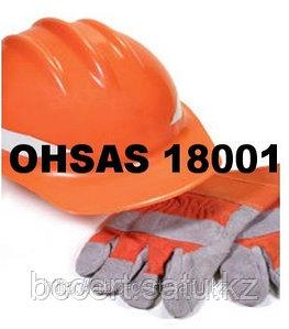 Сертификаты СТ РК OHSAS 18001, г. Алматы