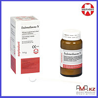 Endomethasone N (Эндометазон H) – порошок (14 гр), Septodont (Франция)
