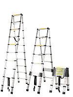 Телескопическая лестница в Атырау(250 см)