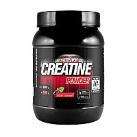 Active Lab Creatine Powder 600 гр.