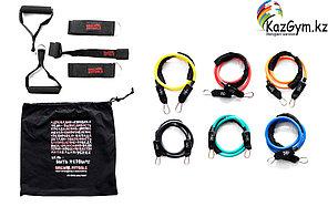 Набор эспандеров трубчатых (6 шт.) и аксессуаров в сумке (FT-TRTE-MULTISET)