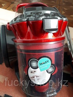 Haley vacuum cleaner, фото 2