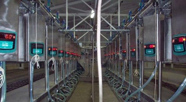 Ценовое предложение по доильным залам , фото 2