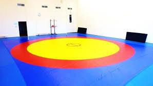 Борцовский ковер  трехцветный) 10м х 10 м соревновательный толщина 5 см НПЭ, фото 2