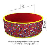 Сухой бассейн с шариками Романа Веселая поляна (красный)