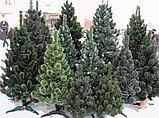 Ели искусственные искусственная ель, елки искусственные, елки из пвх 13 м (диаметр 5,7 м), фото 4