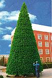 Искусственная каркасная елка Астана, хвоя-пленка 24 м (диаметр 10,5 м), фото 3