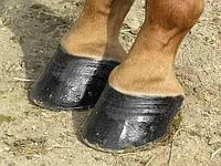 Vet Clean Strong Hoof (20 кг)