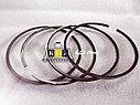 Поршневые кольца 3801056/4089810-10  3082580/3103159 Cummins SD22 SD23 SD32   NT855-C280/C360, фото 2