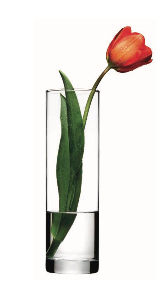 Ваза Pasabahce Flora 43767 (26 см)