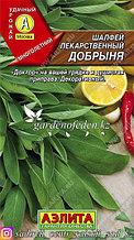 """Семена шалфея лекарственного Аэлита """"Добрыня""""."""
