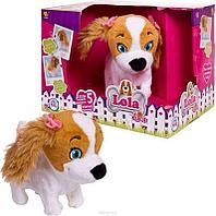 Собака Lola интеракт. (мл. сестра Lucy эл/мех. выполняет 5 команд+коммуницирует с Lucy