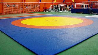 Борцовский ковер  трехцветный 12 х 12 м с покрышкой, толщина 5 см НПЭ