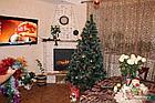 Искусственная елка. 300 сантиметров. (3 метра), фото 2