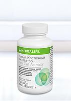Клеточный Активатор.  Входящие в состав ингредиенты способствуют эффективному усвоению нутриентов и витаминов