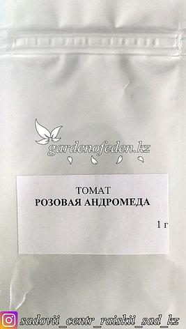 """Профессиональные семена. Томат """"Андромеда розовая F1"""",20штук., фото 2"""